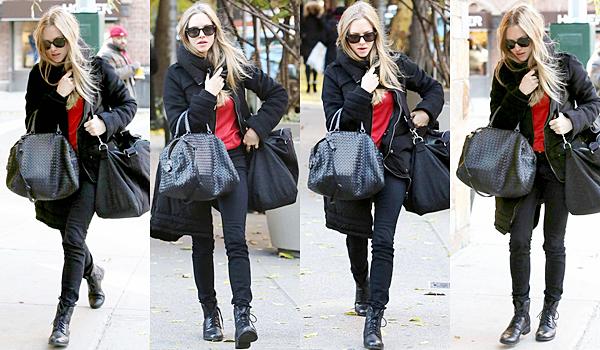 20 Novembre 2014 :  Amanda a été aperçue à Paris ! Elle faisait du shopping sur les Champs Elysées avec sa mère. les américains et les anglais adorent la baguette française !