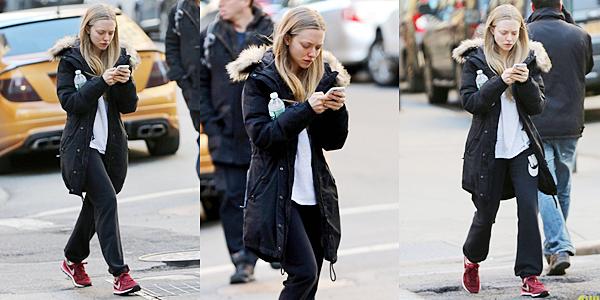 23 Mars 2015:  Amanda s'est rendue à l'avant première de son film : While We're Young. Elle portait une robe signée Valentino.