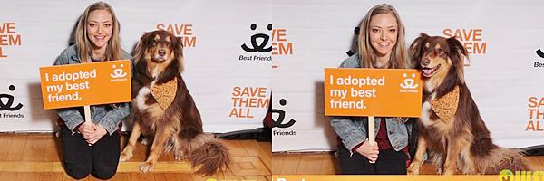 27 Avril 2015:   Amanda s'est rendue au the Best Friends Animal Society pour promouvoir l'adoption des animaux. Elle s'y est rendue évidemment avec Finn.
