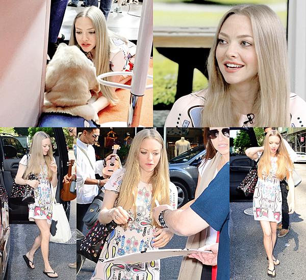24 Juin 2015:  Amanda était présente à l'avant première de son nouveau film Ted 2 à New York. Elle portait une robe signée Mugler. Elle a posé avec ses partenaires.
