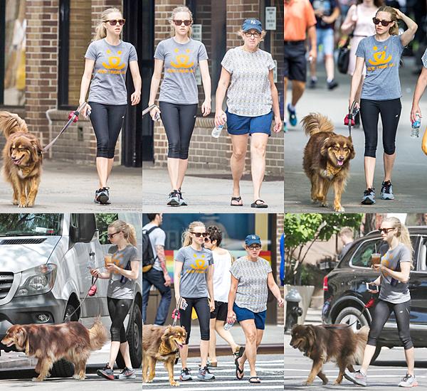25 Juin 2015:  Amanda a été aperçue dans les rues de New York avec sa mère et son chien.