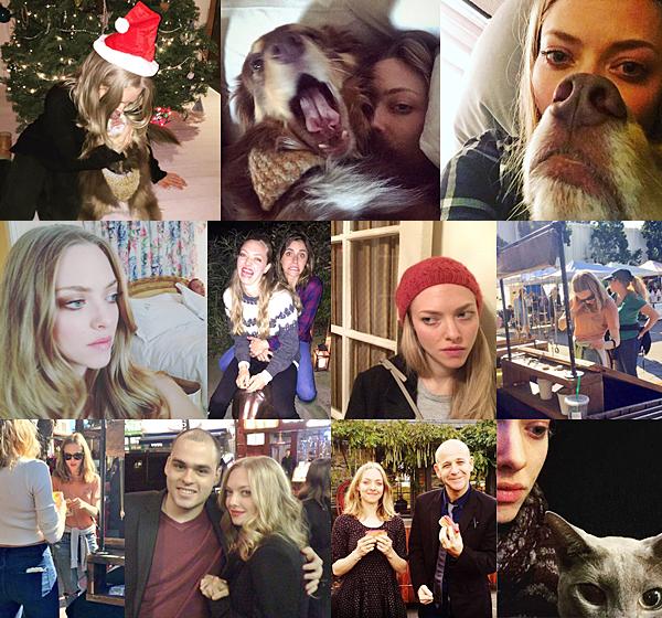 3 Décembre 2015:  Amanda a fêté ses 30 ans avec sa famille :) Deux photos de l'événement ont été publiées par Amanda sur son compte instagram.