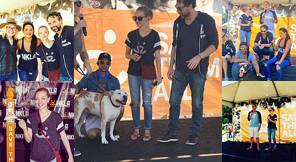 """5 Juin 2016 :  Amanda a participé à un événement de l'association """"SAVE THEM ALL"""" qui se bat pour les animaux retrouvent un foyer. Amanda est très investit pour cette association!"""