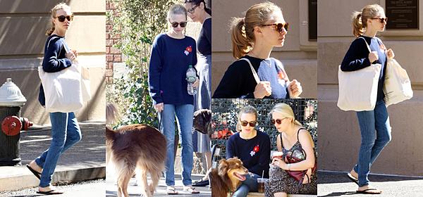 16 Septembre 2016 :  Amanda est allée sortir Finn dans les rues de New York.