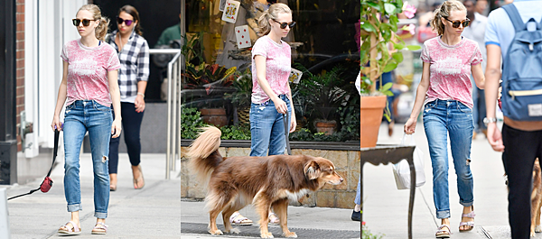 6 Septembre 2016 :  Amanda a été vue se baladant avec Finn dans les rues de NY.