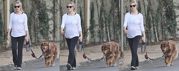 Le 7 Décembre Novembre 2016 • Amanda a été vue promenant Finn dans les rues de Los Angeles.
