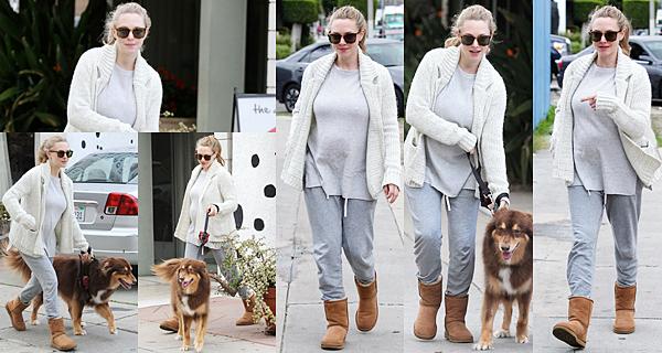 13 Janvier 2017 Amanda a été vue allant chercher Finn à un hotel réservé pour les chiens.