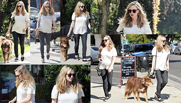 Le 11 Février 2017 • Amanda, sa mère, son financé et Finn sont allés se balader dans un parc à Los Angeles.