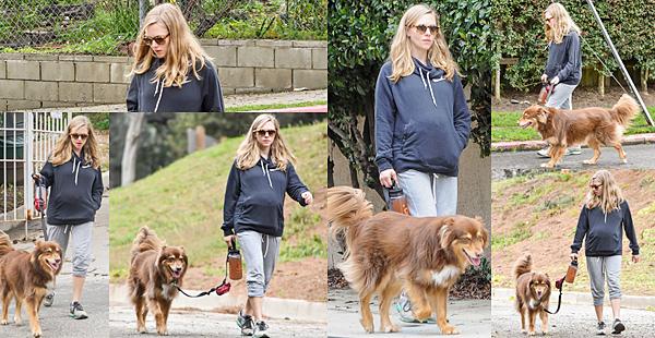 Le 28 Février 2017 : • Le matin, Amanda a été vue avec un ami à Los Angeles. L'après midi, elle est allée se balader avec Finn.