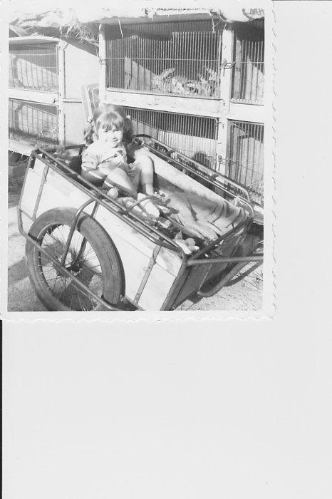 Cart-A-Noush carterie scrap
