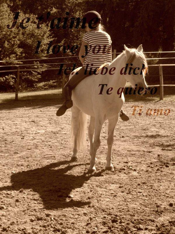 ♥ Je t'aime tellement mon petit poney d'amour ♥