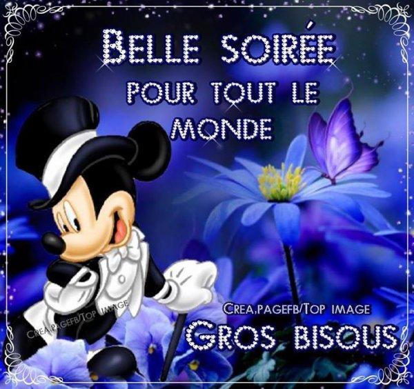 (l) Très bonne soirée  à tous , bisousssss (l)
