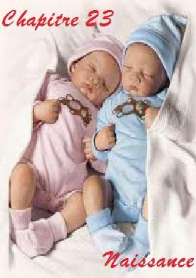 Chapitre 23 naissance et fin tome 1
