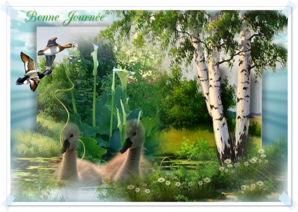 La nature est pleine d'amour