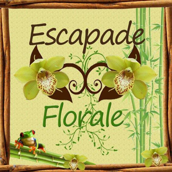 votre Nouvelle enseigne Escapade Florale