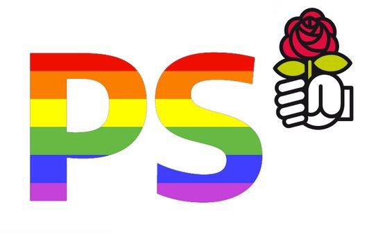 JE SUIS POUR LA TOLERANCE POUR LES DROITS DES HOMOS ( MARIAGE POUR TOUS ET ADOPTION POUR COUPLE HOMO ) DONC JE VOTE LA GAUCHE ( PS )