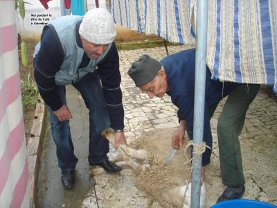 Fête de l'Aïd el Kebir, la fête du mouton