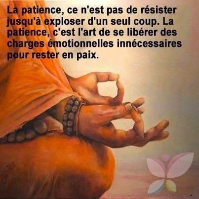 A médité.. Zion 💕