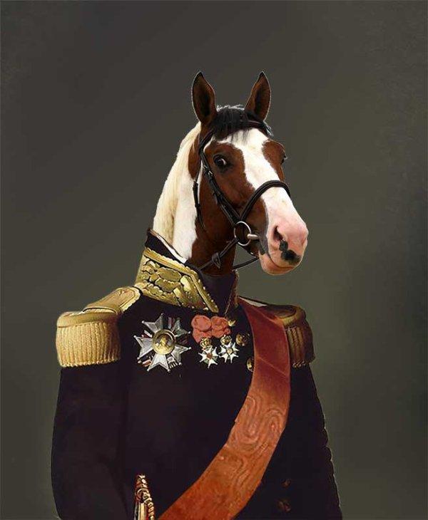 Je vous présente Ulyss Morinda en costume militaire