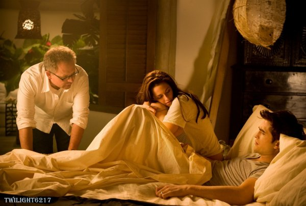 Stills Breaking Dawn Part 4