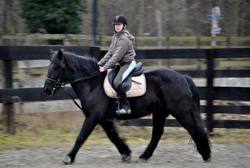 L'équitation est le seul sport individuel qui se pratique a deux.