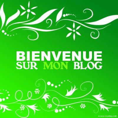 bienvenu dan mon blog