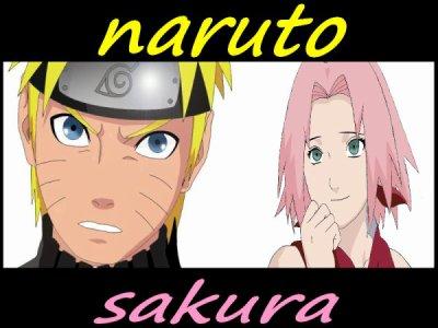 Bienvenue sur NaruSaku4Ever