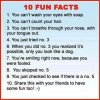 10 FUN FACTS - SchoolandUniversity
