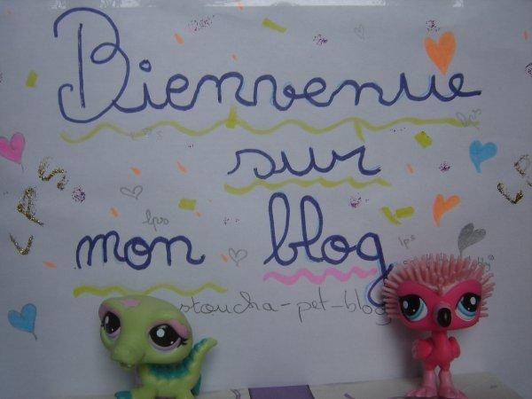 Bienvenue sur mon blog !!