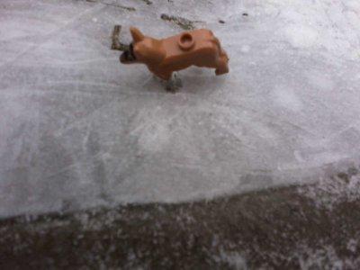 Les petshop dans la neige !