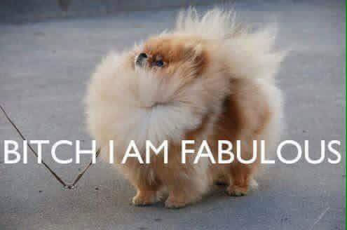 VOILA I'AM SO FABULOUS.