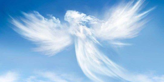 Les bras d'un Ange...