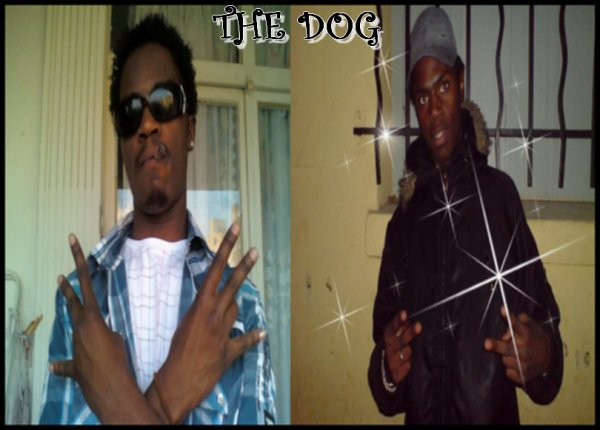 LES FRERES THE DOG