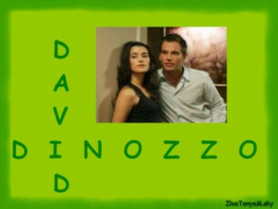 David et DiNozzo