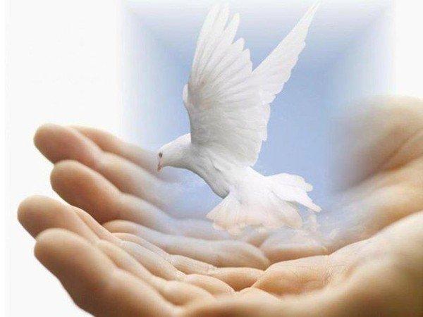 Ce que vous souhaitez, Dieu le souhaite aussi pour vous tous, et toutes !