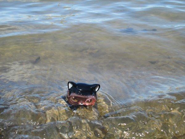 Info + Photos au lac !