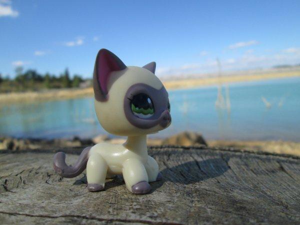Photos au lac 2 ^^