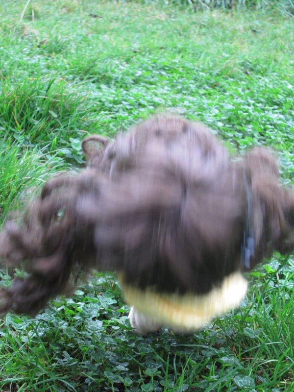 Séance photo de Karen sous la pluie ^^