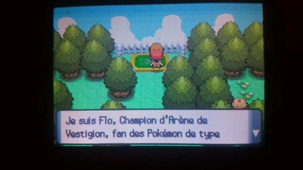 Badge Forêt en Poche !!!