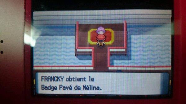 Badge Pavé en Poche !!!