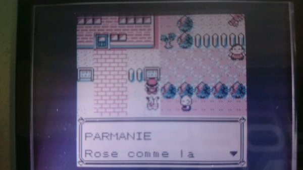 Parmanie