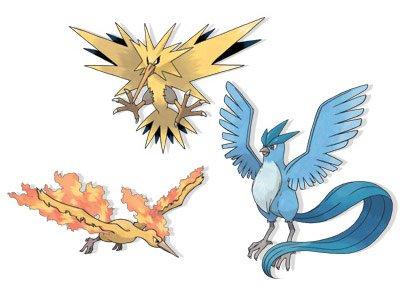 3 oiseaux de légende
