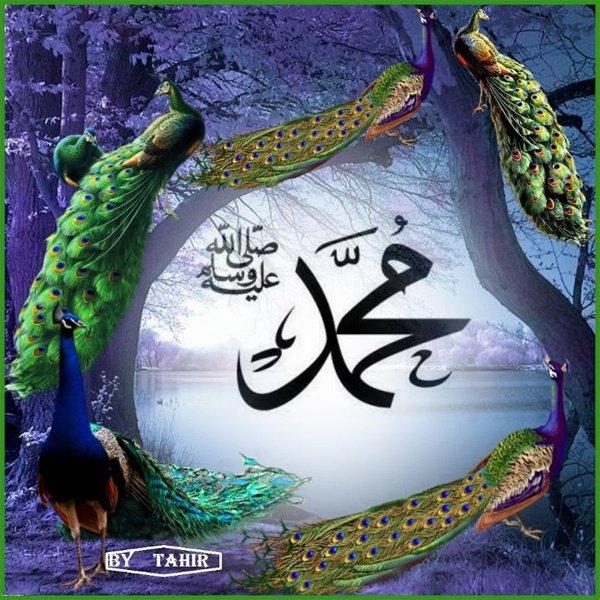 Muhammad (saws)