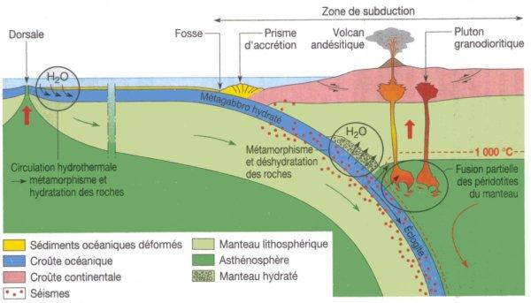 Blog de geologiepassion la passion de la g ologie - Difference entre pas de porte et fond de commerce ...