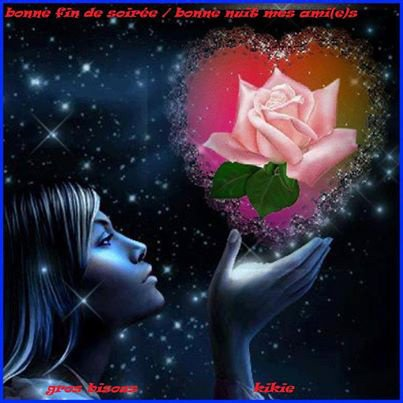 bonne nuit les ami(e)s bisousssssssssssssss
