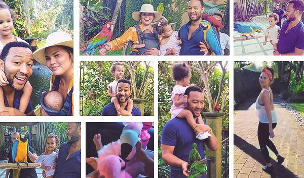 •••  CANDIDS La petite famille a montrer son quotidien matinal et Chrissy sa routine beauté, le 07 et 08 août 2018           Le lendemain, ils ont visité un parc d'oiseaux de la ville de Bali avec la mère de Chrissy. Cette dernière a aussi fait un peu de sport.