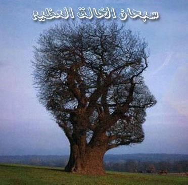لا ءاله ءالا الله محمد رسول الله
