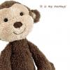 It is my monkey!
