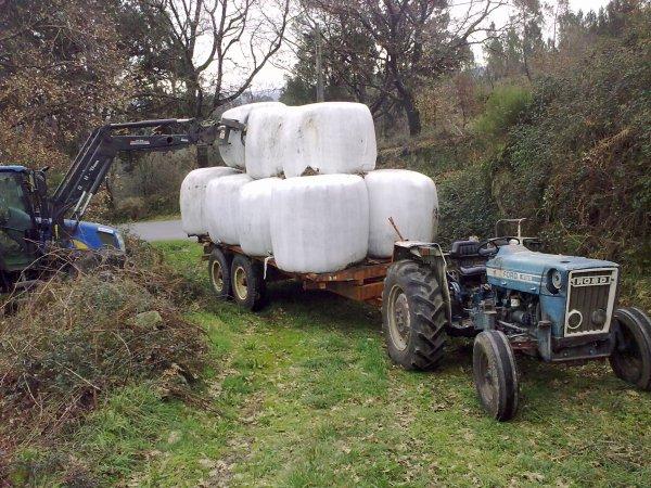 ford 4100 com reboque galucho carregado de fardos