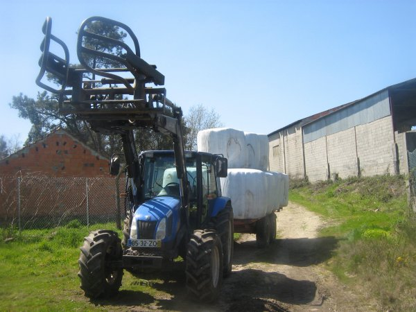 new holland tl100a and galucho